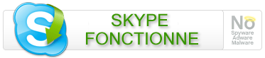 Le rétablissement du réseau Skype ... après la panne du 16 août 2007.